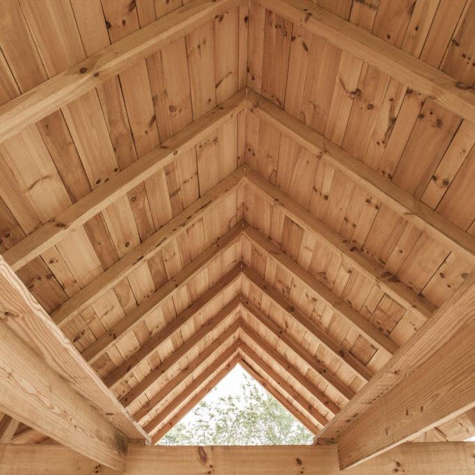 Timber_1